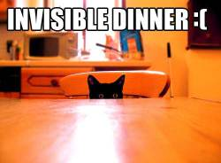 Invisible dinner!