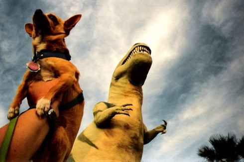 The dinosaurs were actually smaller than anyone imagined