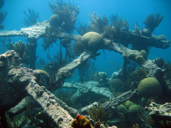 Sunken Planes http://raincoaster.com/2007/12/06/sunken-treasures-aircraft-20000-leagues-under-the-sea/