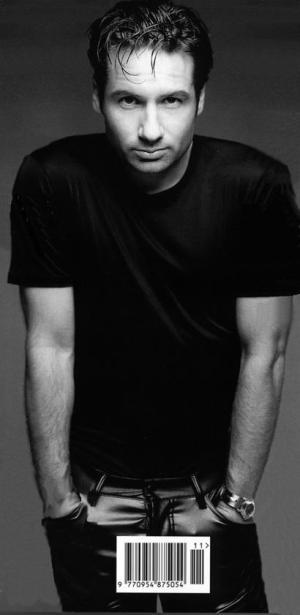 David Duchovny, himbo extraordinaire