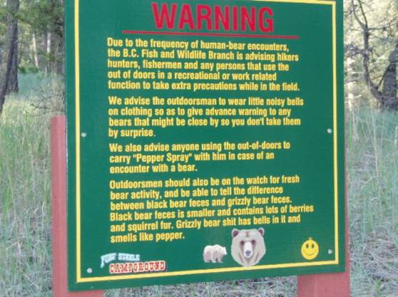 Bear Warning!