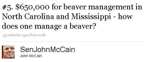 beaver john mccain