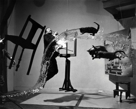 Dali and flying cats by philippe halsman