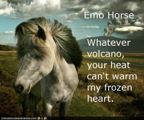 Emo pony doesn't care about your sugar. Life IS lumps, sweetie.