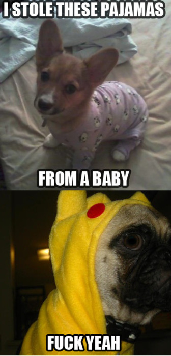 Evil puppehs are evil