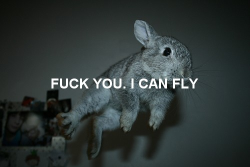 Fuck You I Can Fly