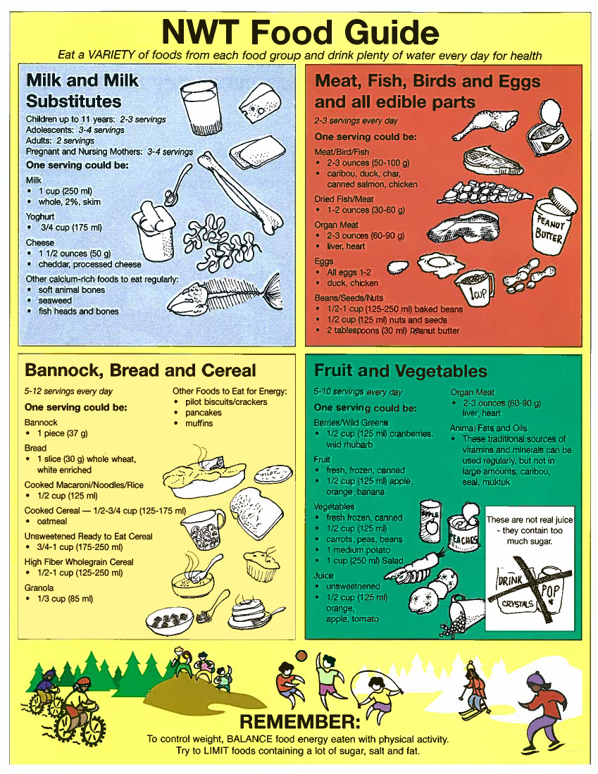 BACK to the future. It looks post-apocalyptic on the NWT Food Guide