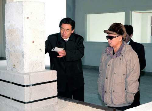 Kim Jong Il looking at a headstone