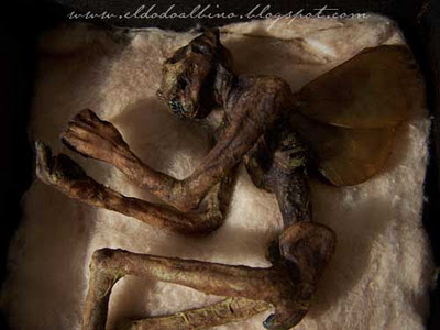mummified cottingley fairy is mummified, akshuly