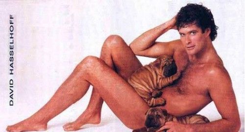 Don't hassle the Hoff. Not when he's in that position
