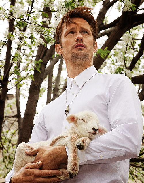 Skarsgard had a little lamb
