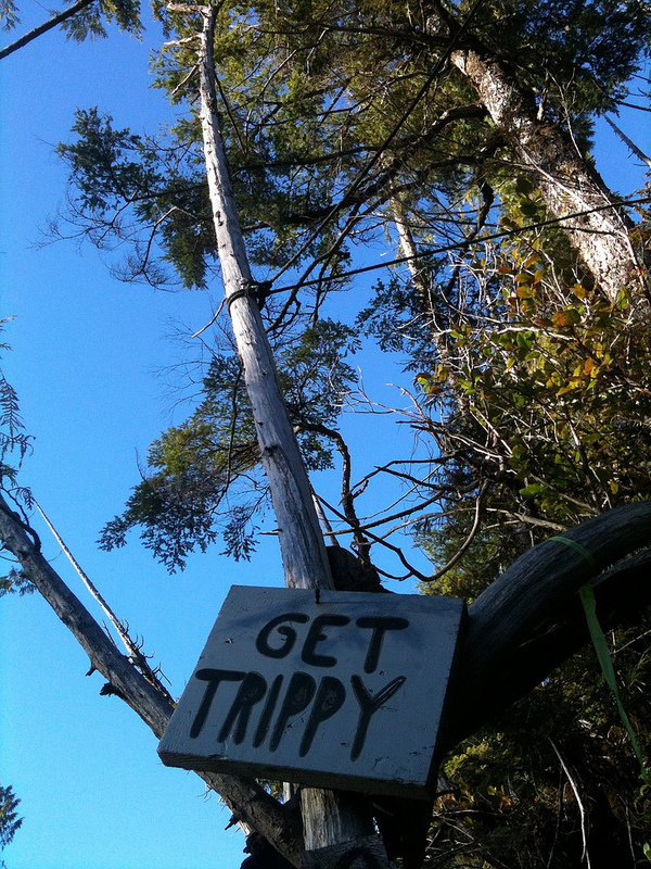 Get Trippy. YOU MUST OBEY. Or not, dude, Whatever's cool.
