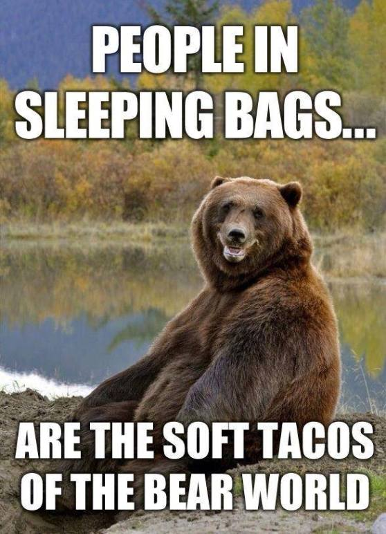 and igloos are the hard tacos