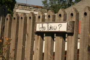"Sign on wooden fence that says ""Who knew?"""