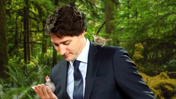 Trudeau feeds baby birbs some grub